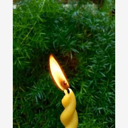 twisty beeswax candle 11 inch - housewarming gift - unity candle - bridesmaid gift