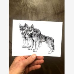 Wolf Cubs 5x7 Wolf Print